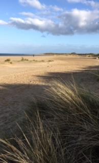 Dunes_Dorset beach